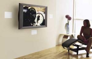 Bose In-Wall Speakers